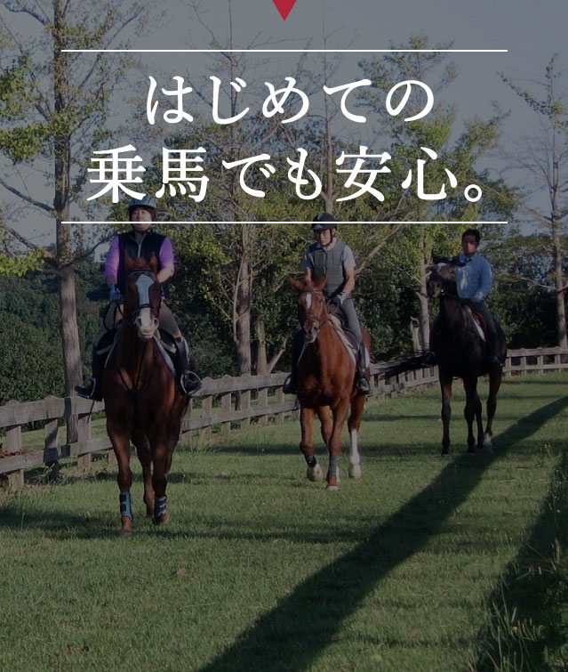 特別価格で乗馬体験