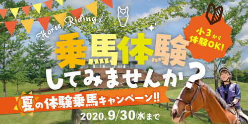 夏の乗馬体験キャンペーン