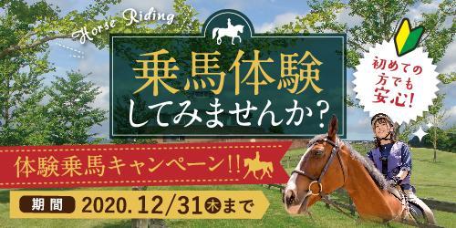 秋の乗馬体験キャンペーン
