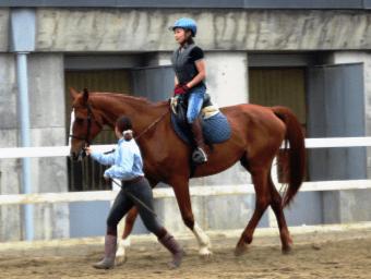 お試し乗馬体験<