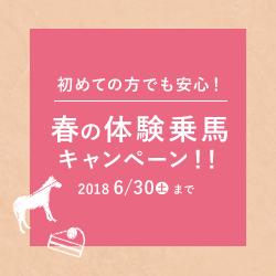春の乗馬体験キャンペーン