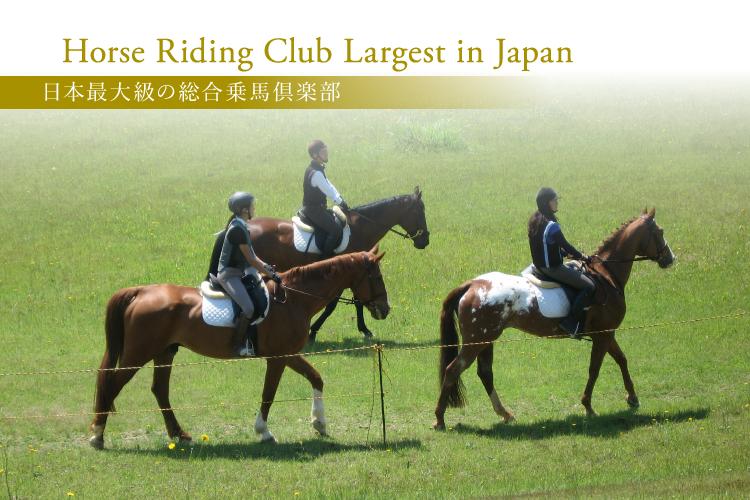 日本最大級の総合乗馬倶楽部