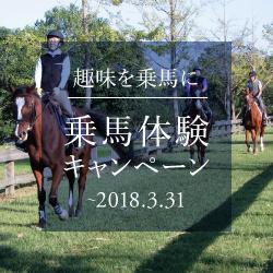 乗馬体験キャンペーン