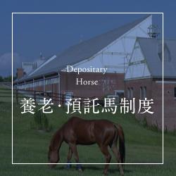 預託馬制度